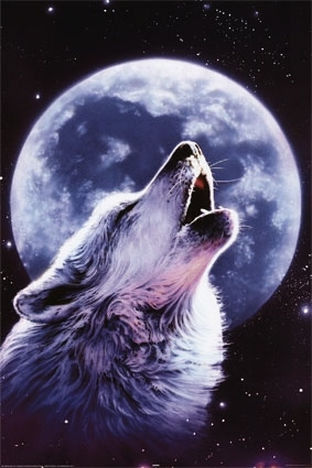 Obrazek użytkownika lonley wolf