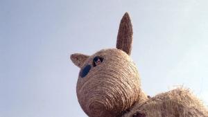 Obrazek użytkownika elefants