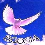 Obrazek użytkownika sgosia